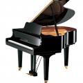 Baby Grand Piano Yamaha Akustik GB1K-PE Promo Harga Spesial Murah