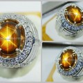 Elegant Golden SAFIR Star Safir Star Sharp & TOP - RSG 030