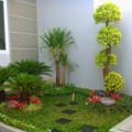 tukang taman, rumput gajah mini taman rumah