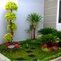 tukang taman minimalis dan ahli tanam rumput gajah mini depok