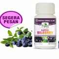 bilberry herbal mata nutrisi suplement vitamin buah natural bilberi bilbery