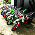 Motor Mini Trail Shogun 49cc