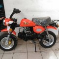 New Honda Mongkay Orange 110cc