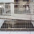 Kandang HMI Untuk Kucing Anjing ( Kuat, Kokoh, Besi Tebal )
