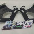 Tail tidy ninja 250FI agna