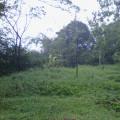 dijual tanah L.1480m2 (SHM)