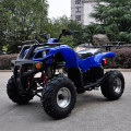 Anak ATV , 125cc, EPA