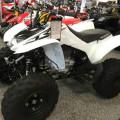 Motor ATV 250cc Raptor