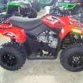 Motor Atv Arctic Cat 300 UTILITY