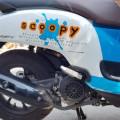 Honda Scoopy playpul ESP