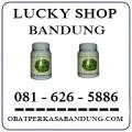 Jual Daun Bungkus Di Bandung 0816265886
